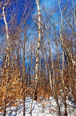 Winter Landscape I Poster