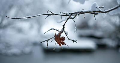 Winter Solo Poster