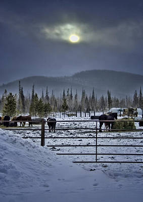 Winter Sunset On The Ranch Poster