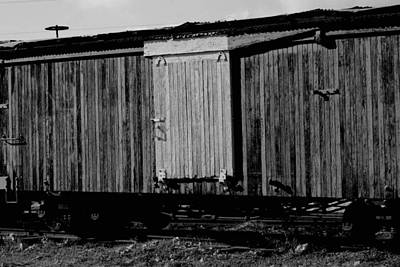Poster featuring the photograph Wood Boxcar by Elizabeth  Doran