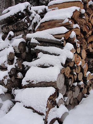 Poster featuring the photograph Wood Pile by Tiffany Erdman