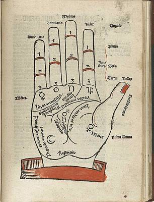 Woodcut Of A Hand With Palmist Markings Poster by Everett