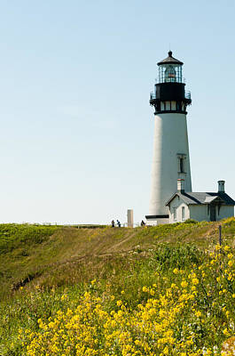 Yaquina Head Lighthouse Poster by Denise Lett
