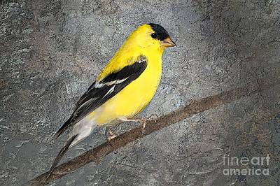 Yellow Poster by Betty LaRue
