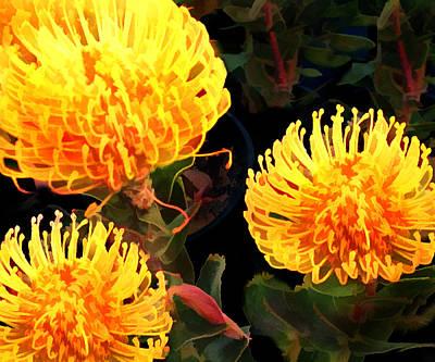 Yellow Protea Poster