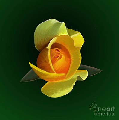 Yellow Rose Poster by Rand Herron