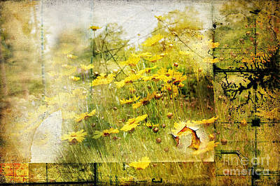 Yellow Wildflower Field Abstract Poster