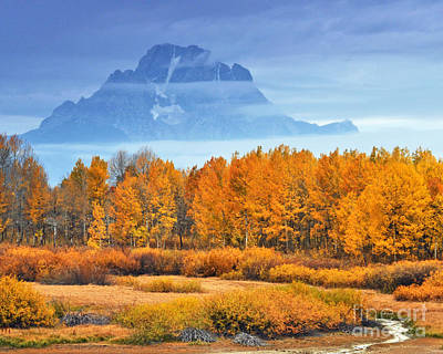 Yelow And Orange Autumn Grand Teton National Park Poster