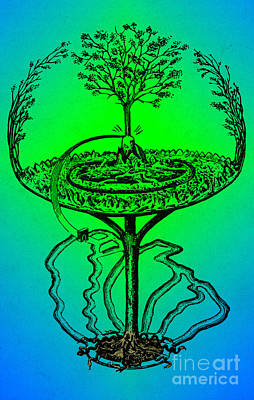 Yggdrasil From Norse Mythology Poster by Photo Researchers