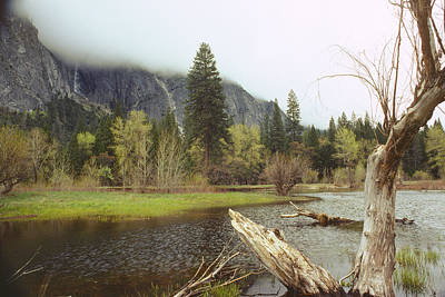 Yosemite Poster by Mark Greenberg