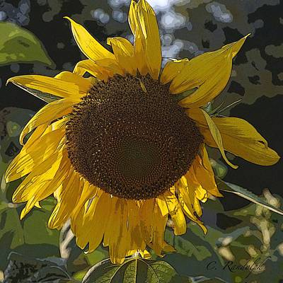 Poster featuring the photograph You Are My Sunshine by Cheri Randolph