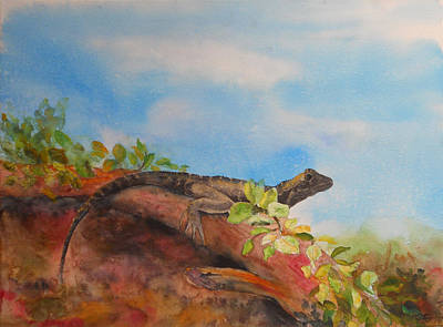 Young Australian Water Dragon Poster by Carol McLagan