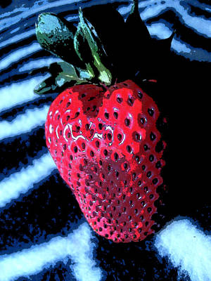 Poster featuring the photograph Zebra Strawberry by Kym Backland