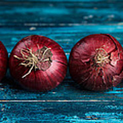Red Onions Poster by Nailia Schwarz