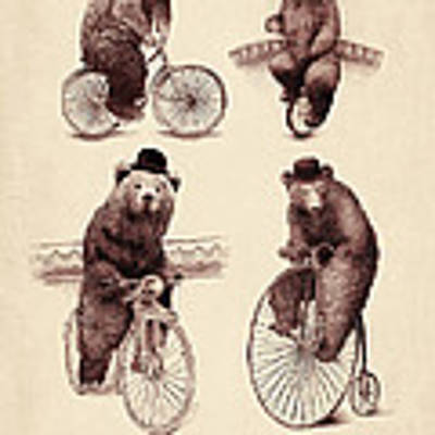 Bears On Bicycles Poster
