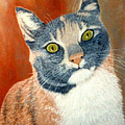 Calico Cat Poster by Karen Zuk Rosenblatt