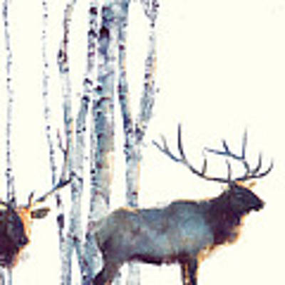 Elk // Follow Poster