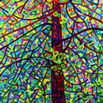 Kaleidoscope Poster by Mandy Budan