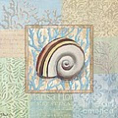 Oceanic Shell Collage Iv Poster