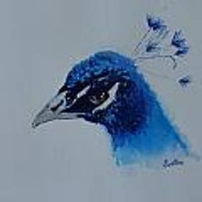 Precious Peacock Poster by Judy Fischer Walton