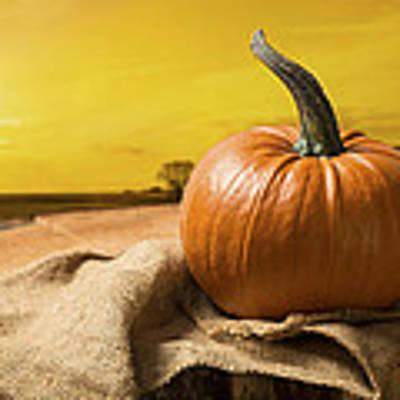 Sunset Pumpkin Poster
