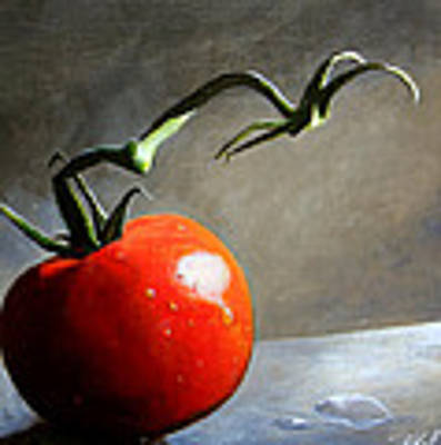 The Lone Tomato Poster by Steve Goad