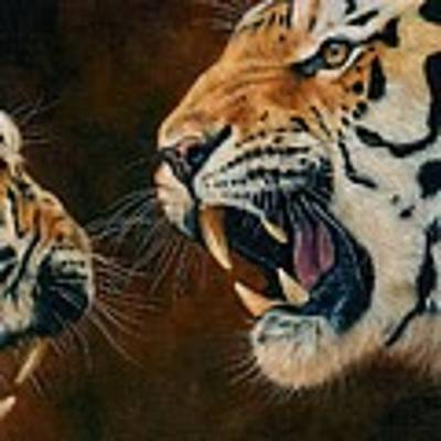 Tiger Confrontation Poster by David Stribbling