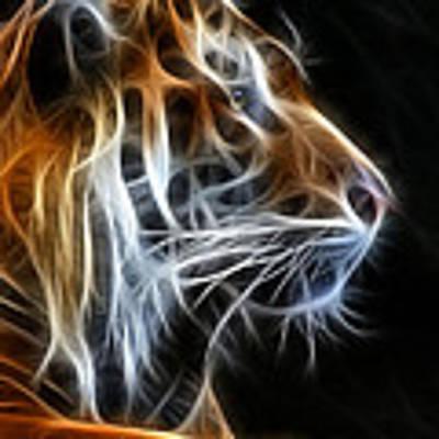 Tiger Fractal 2 Poster by Shane Bechler