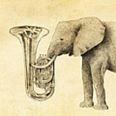 Tuba Poster by Eric Fan