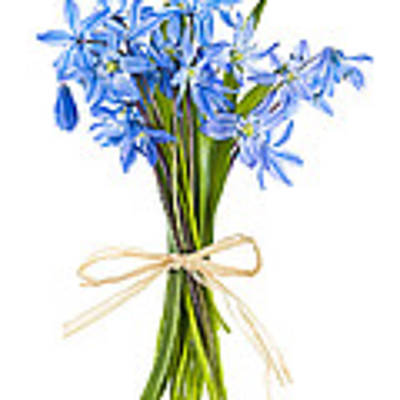 Blue Wildflower Bouquet Poster