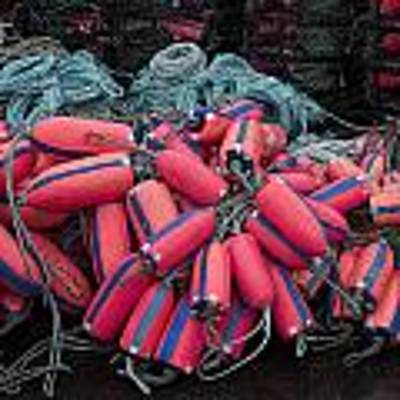 Pile Of Pink And Blue Buoys Poster by Carol Leigh