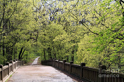 Poster featuring the photograph  Matthiessen State Park In Spring by Paula Guttilla