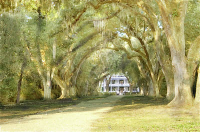 Poster featuring the photograph  Rosedown Plantation by John Hix