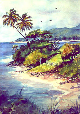 Vieques Island Puerto Rico Poster by Estela Robles