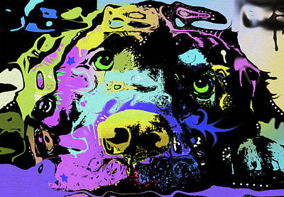 0212 Labrador By Nixo Poster