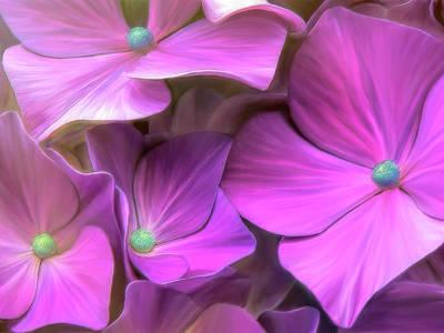 Hydrangea Florets Poster