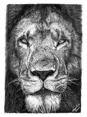 059 - Lorien The Lion Poster