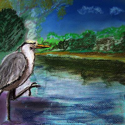 071115 Blue Heron Pastel Sketch Poster by Garland Oldham