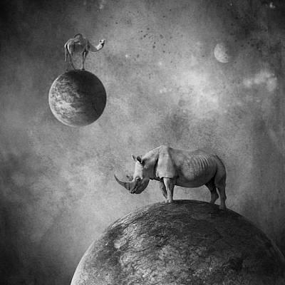 ... Poster by Beata Bieniak