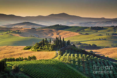 A Golden Morning In Tuscany Poster