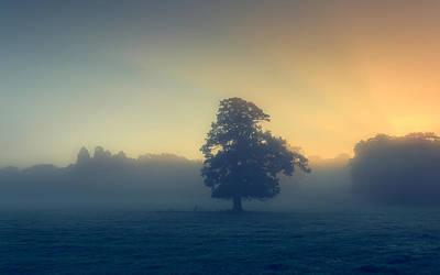 A Misty Sunrise Poster by Chris Fletcher