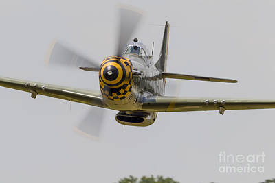 A P-51 Mustang Flies By At East Troy Poster