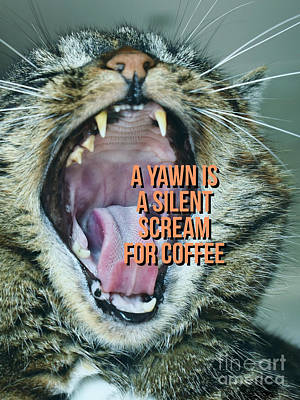 A Yawn Is A Silent Scream For Coffee Poster