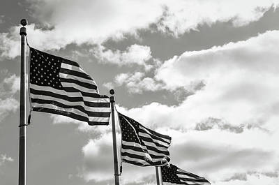 American Flags In The Wind Poster by Brandon Bourdages