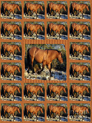 American Wild Horse Mustang On Posters Canvas Pillows Curtains Duvetcovers Phone Cases Tshirts Jerse Poster by Navin Joshi