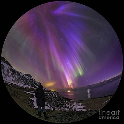 Aurora Borealis Over Iceland Fisheye Poster by Babak Tafreshi