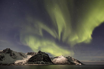 Aurora Borealis Poster by Thomas Berger