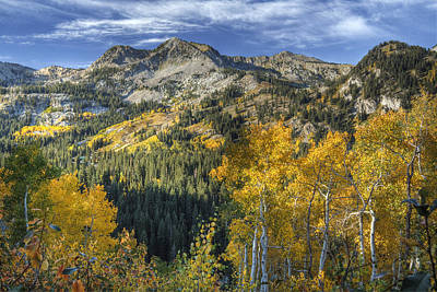 Autumn Colors In The Wasatch Mountains Poster