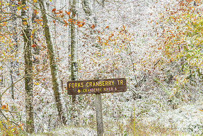 Autumn Snow Cranberry Wilderness Poster