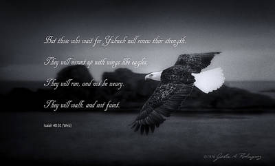 Bald Eagle In Flight With Bible Verse Poster by John A Rodriguez